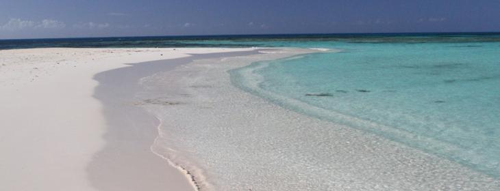 the-beach-feature