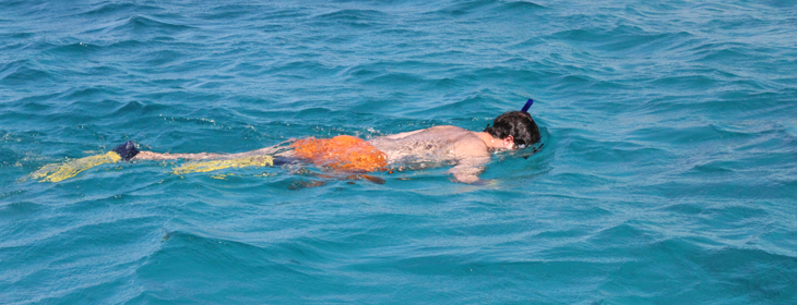 snorkeling-feature